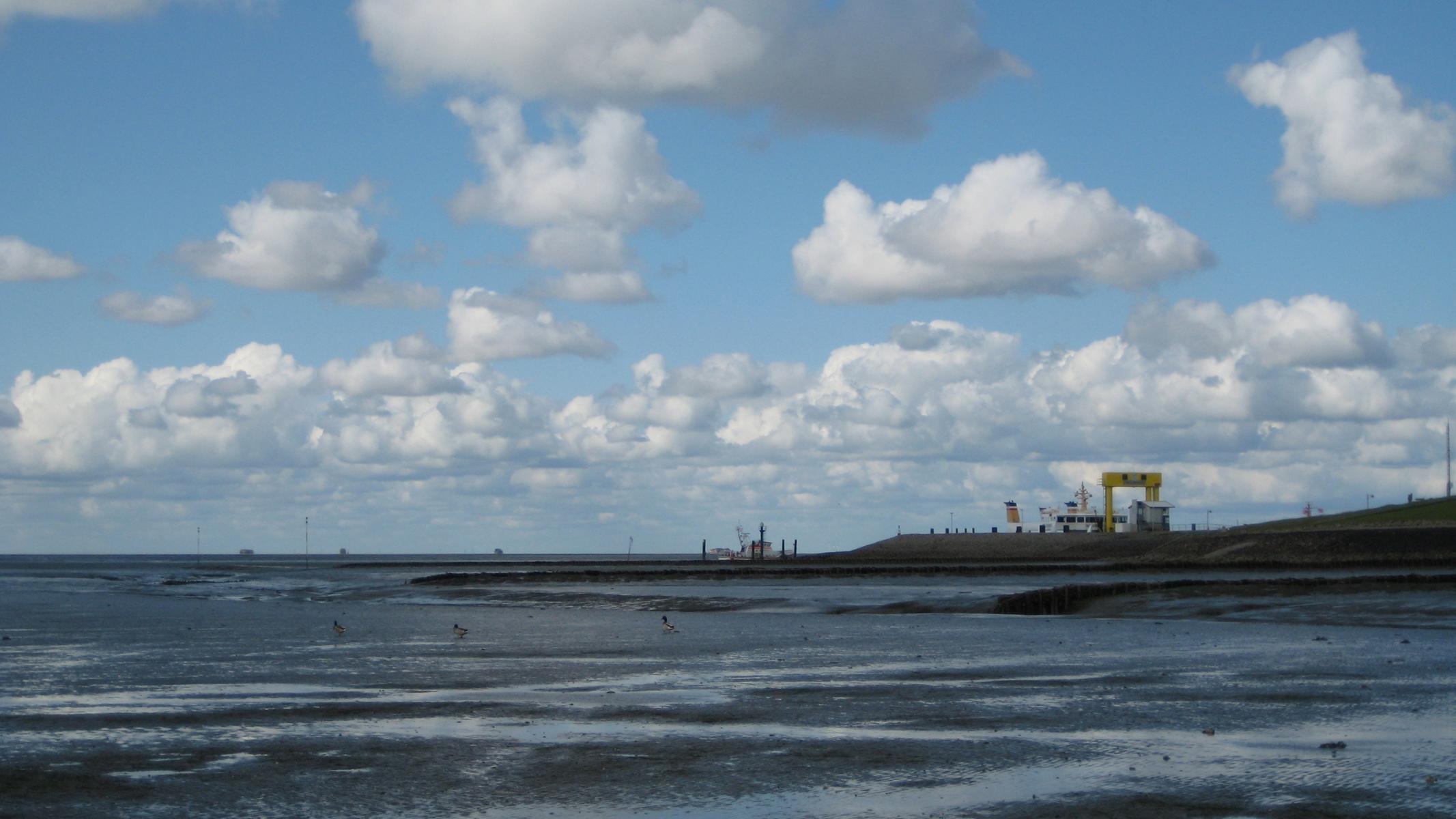 Nordsee 8