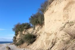 Steilküste 9
